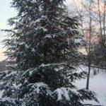 Wunderschönes Salzburger Land für den Familienurlaub
